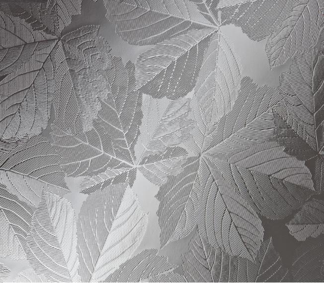Sycamore - Pilkington Glass Range